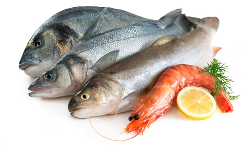 Fish and shellfish allergy dagan md nyc for Allergic reaction to fish